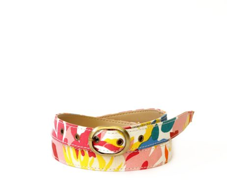 Colour Pop Belt